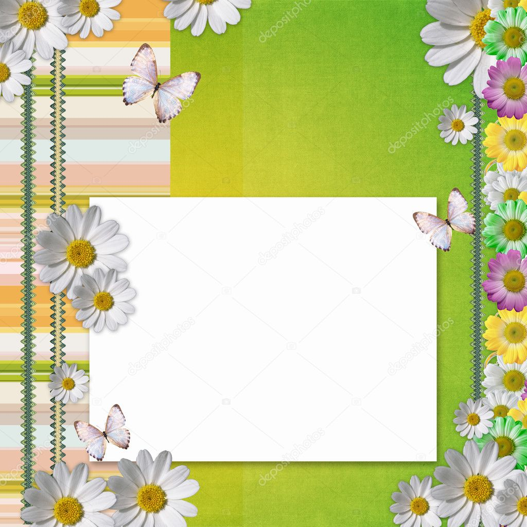 Card for the holiday with  chamomile flowers  Stock Photo #5462671