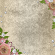 Vintage beige background with pink roses, pearls and lace — Stock Photo