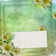 Summer Congratulation card to the holiday with frame and flowers — 图库照片