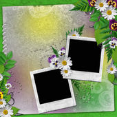 Frame for two photos with colorful flowers — Stock Photo
