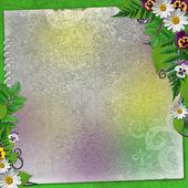 Fundo de verão com flores coloridas — Fotografia Stock