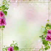 Background for congratulation card in pink and green — Stock Photo