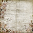 Vintage floral background with orchids, text, space for text or — Stock Photo #5854595