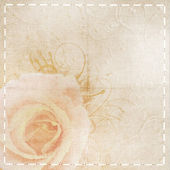 Vintage beige wedding background with rose — Stock Photo