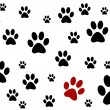 Black and white background with paws — Stock Photo