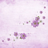 Beautiful pink floral background — Stock Photo