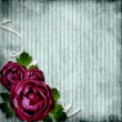 Roses on the grunge striped background — Stock Photo