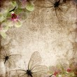 Vintage background with orchids and butterfly — Stock Photo