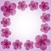 Pink flower frame with copy space — Stock Photo