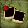 Vintage card with red  rose and old frames for photos - Zdjęcie stockowe