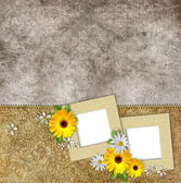 Two frames on vintage background — Stock Photo