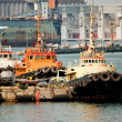 Three tug boats in the port — Stock Photo #5575141