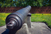 Artillery of Citadel in Warsaw — Stock Photo