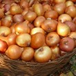Royalty-Free Stock Photo: Onions in a wicker basket on the earth