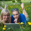 Royalty-Free Stock Photo: Two girls student with a laptop in the park