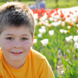 Portrait of a boy on a background of tulips on a sunny day — Stock Photo