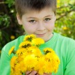 A boy with a bouquet of dandelions — Stock Photo