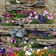 Stock Photo: Stone flower bed on wall