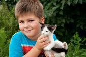 A boy and funny kitten in his arms — Stock Photo