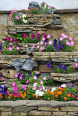 The stone flower bed on the wall — Stock Photo