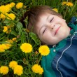 Stock Photo: The boy lay on the grass with dandelions