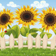 Sunflowers — Stockvectorbeeld