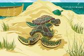 Sea turtles — Stock Vector