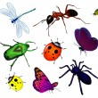 Set of various insects - Stock Vector