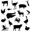 Set with silhouettes of various animals — Stock Vector