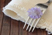 Silverware Set with Fork and flower — Stok fotoğraf