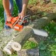 Stock Photo: Mwith chainsaw