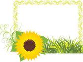 Zonnebloem met gras in de Decoratief frame — Stockvector
