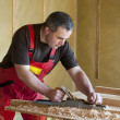 Stock Photo: Carpenter work with planer