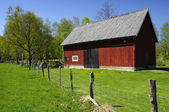 Swedish barn for cattle — Stock Photo
