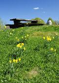 Spring hill with milk farm symbol — Stock Photo