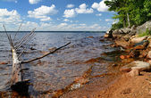 švédský letní jezero — Stock fotografie