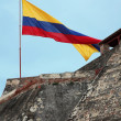 Landscape with Colombia flag — Stock Photo