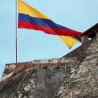 Stock Photo: Landscape with Colombia flag