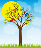 Cute tree and birds — Stock Vector