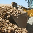 Loader and Stones on Quarry — Stock Photo