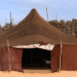 Bedouin camp — Stock Photo
