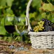 Stock Photo: Harvest and wine