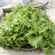 Fresh salad leaves — Stock Photo