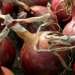 Red Onions — Stock Photo #6450401