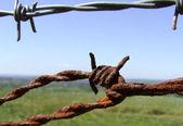 Rusty Fence — Stock Photo