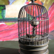 A bird in a metal birdcage . - Photo