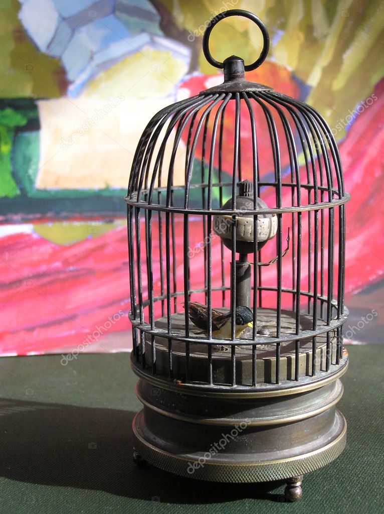 A bird in a metal birdcage .  Stock Photo #6701879