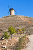Traditional spanish windmill — Stock Photo