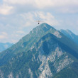 Hanggliding in swiss alps — Stock Photo #6164635