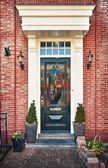 Typical Dutch front door — Stock Photo